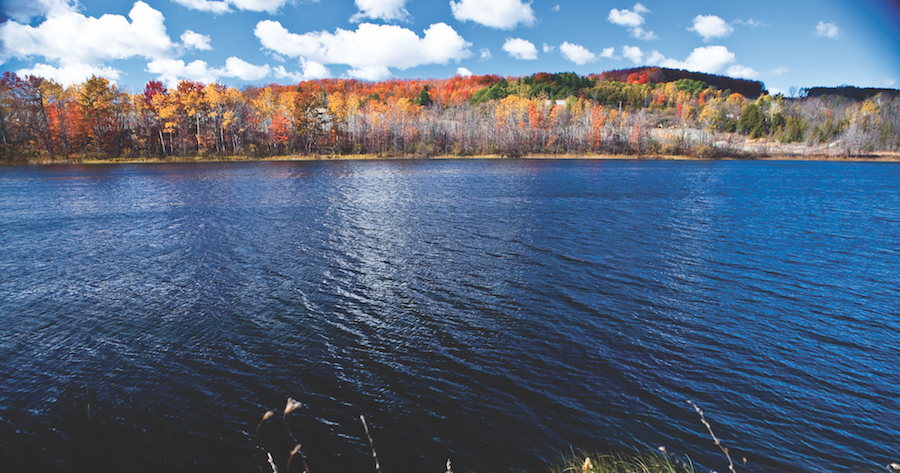 Drive Paddle Or Hike This Torch Lake Fall Color Tour